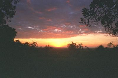 a later view of sunset over lake victoria