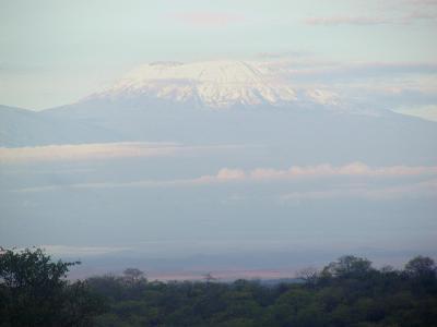 mount kilimanjaro is actually in tanzania