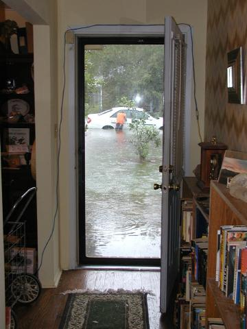view from our front door around 11 A.M.