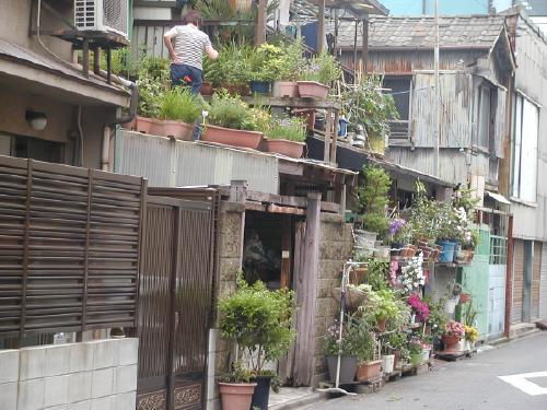 nagoya garden