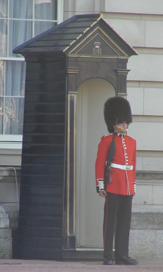 palace guard at buckingham palace
